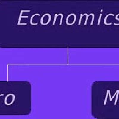 Free economics homework help